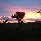 タンザニア 2004.2